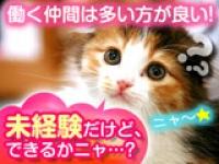 ◇カンタン軽作業◇
