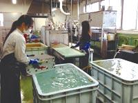 自社洗浄工場で常に清潔なフィルターをストック