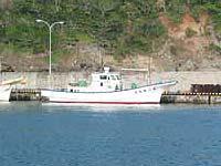 神徳丸 (母島漁協所属)の求人情報を見る