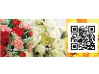 有限会社 アキ生花店の求人情報を見る