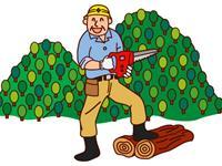 小菅林業 有限会社の求人情報を見る