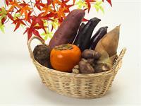 栄養士業務 200~250食
