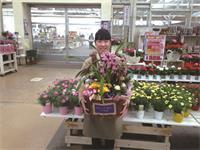 ジョイフル本田ガーデンセンター瑞穂店の求人情報を見る