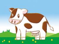 コーシン乳業株式会社 の求人情報を見る
