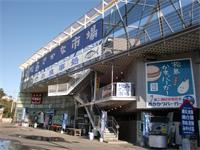 松島さかな市場は・・