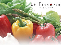 La Fattoriaの求人情報を見る