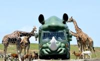 九州自然動物公園アフリカンサファリの求人情報を見る