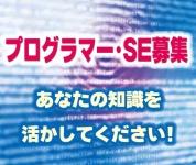 ビナンシステムサービス株式会社の求人情報を見る