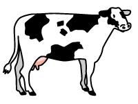 古川牧場株式会社の求人情報を見る