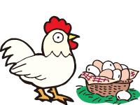 ㈱木村養鶏場の求人情報を見る