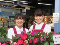 ホームセンターカンセキ 龍ケ崎店の求人情報を見る