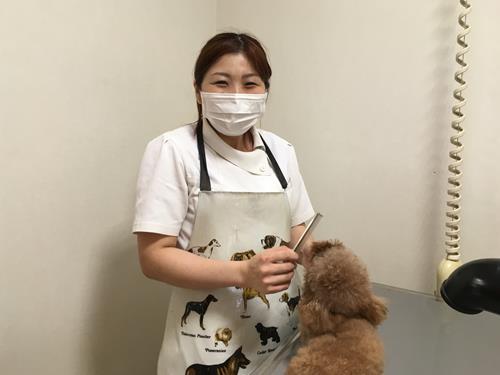 稲村動物病院の求人情報を見る