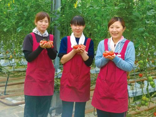 株式会社山田みどり菜園の求人情報を見る