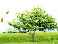 住環境グリーンライフエコロジー株式会社の求人情報を見る