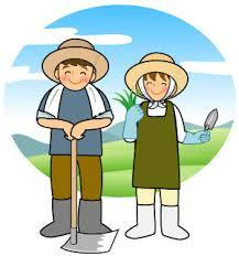 農事組合法人 あおいふぁーむの求人情報を見る