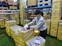 株式会社ダイセーエクスプレスシステム 京都ハブセンターの求人情報を見る