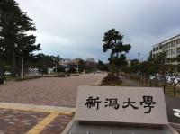 新潟大学生活協同組合の求人情報を見る