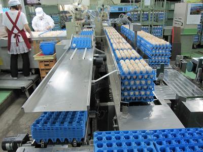 奈良県養鶏農業協同組合GPセンター事業部の求人情報を見る