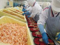 カネ美食品(株) 新潟工場の求人情報を見る
