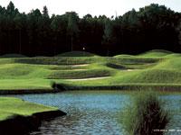 私たちと一緒に新しいゴルフ場をつくりましょう。