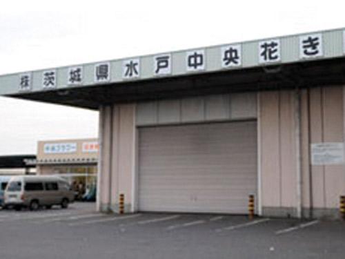 株式会社 茨城県水戸中央花き市場の求人情報を見る