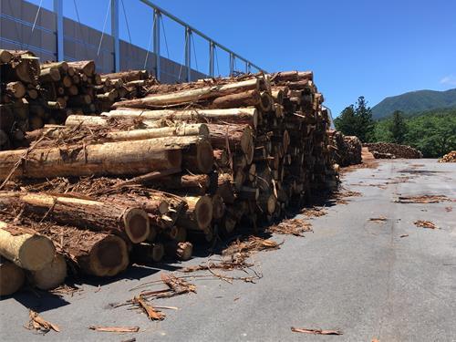 燃料となる原料の木材