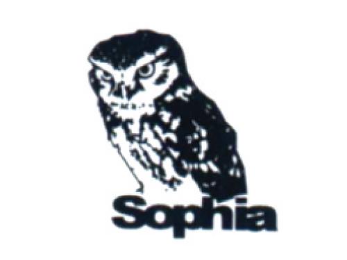 株式会社ソフィアプレシジョンの求人情報を見る